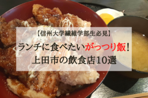 【信州大学繊維学部生必見】ランチに食べたいがっつり飯!上田市のおすすめ飲食店10選